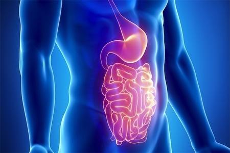 Remédio para infecção intestinal
